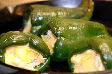 Gluten-Free Poblano Peppers stuffed with Chicken and Smoked Gouda